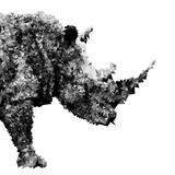 Low Poly Safari Art - The Rhino - White Edition Lámina por Philippe Hugonnard