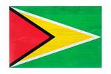 Guyana Flag Design with Wood Patterning - Flags of the World Series Prints by Philippe Hugonnard