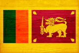 Sri Lanka Flag Design with Wood Patterning - Flags of the World Series Posters by Philippe Hugonnard
