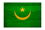 Mauritania Flag Design with Wood Patterning - Flags of the World Series Posters af Philippe Hugonnard