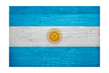 Argentina Flag Design with Wood Patterning - Flags of the World Series Posters by Philippe Hugonnard
