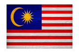 Malaysia Flag Design with Wood Patterning - Flags of the World Series Posters by Philippe Hugonnard