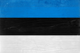 Estonia Flag Design with Wood Patterning - Flags of the World Series Prints by Philippe Hugonnard