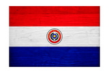 Paraguay Flag Design with Wood Patterning - Flags of the World Series Prints by Philippe Hugonnard