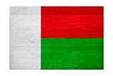 Madagascar Flag Design with Wood Patterning - Flags of the World Series Print by Philippe Hugonnard