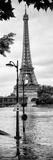 Paris sur Seine Collection - Traffic Light Panel II Fotografisk tryk af Philippe Hugonnard
