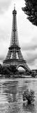 Paris sur Seine Collection - Solitary Tree II Fotografisk tryk af Philippe Hugonnard