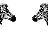 Low Poly Safari Art - Zebras - White Edition Prints by Philippe Hugonnard