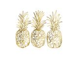 Three Golden Pineapples Poster von Linda Woods