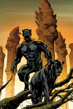 Black Panther No. 1 Cover Art Poster av Mike McKone