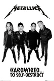 Metallica- Hardwired Band Members Póster