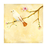 Bird Song IV Premium Giclee Print by Jill Martin