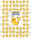 Pokemon- Whole Lot Of Pikachu Affiches