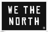 NBA: Toronto Raptors- We the North Poster