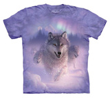 Youth: Colin Bogle-Northern Lights T-Shirts