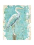 Coastal Egret I V2 Prints by Sue Schlabach