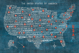 US City Map on Wood Blue Poster by Michael Mullan