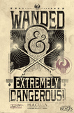 Fantastic Beasts And Where To Find Them- Extremely Dangerous Posters
