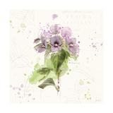 Floral Splash III Posters av Katie Pertiet