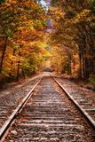 Tracks Into Fall, White Mountains New Hampshire, New England in Autumn Fotografisk trykk av Vincent James
