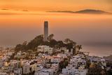 Coit Tower and Golden Fog Flow, San Francisco, Cityscape, Urban View Fotoprint av Vincent James