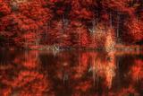 Gimme Some Soul Fotografisk trykk av Philippe Sainte-Laudy