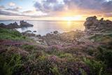 Cote De Granit Rose Sunrise Reproduction photographique par Philippe Manguin
