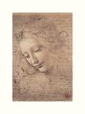 Testa Di Faniciulla Detta Giclee-trykk av Leonardo Da Vinci