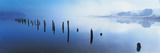 See am Morgen Giclée-Druck von Peter Adams