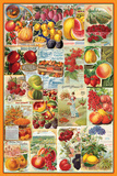 Fruits Seed Packet Collage Posters