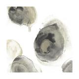 Water Stones III アート : June Vess