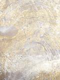Gold Fusion VII 高品質プリント : Julia Contacessi