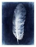 Inverted Feather VI Print by Honey Malek
