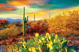 Arizona Desert Colors Photographie