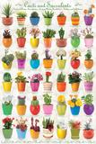 Cactus & Succulents Collage Posters