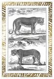 Gilded Safari III Posters af Denis Diderot