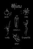 Spice Varieties Kunstdrucke von Ethan Harper