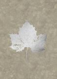 Silver Foil Leaf II on Lichen Wash Plakater af Jennifer Goldberger