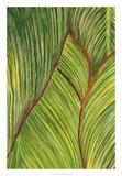 Tropical Crop II Reproduction procédé giclée par Melissa Wang