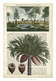 Journal of the Tropics IV Giclee Print by  Vision Studio