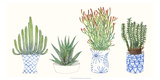 Four Succulents I Kunstdruck von Melissa Wang