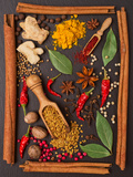 Still Life with Spices and Herbs in the Frame Fotografie-Druck von Andrii Gorulko