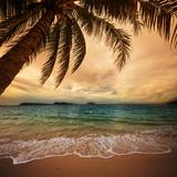 Tropischer Strand Fotografie-Druck von  Kamchatka