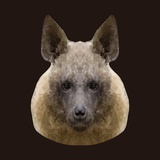Canine Beast of Pray, Hyena, Low Poly Vector Portrait Illustration Lámina fotográfica por Jan Fidler