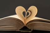 Love Books Love Reading Good Read Fotoprint av Yon Marsh