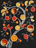Tea Tree Valokuvavedos tekijänä Dina Belenko