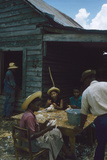 Men Watch Three Young Women Pluck Feathers from Chickenss, Edisto Island, South Carolina, 1956 Photographic Print by Walter Sanders