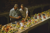 1955: Judges Examining Produce Entries in the Agriculture Building at the Iowa State Fair Fotografisk trykk av John Dominis