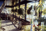 View of Hanging Plants on the Deck of a Floating Home, Sausalito, CA, 1971 Fotografie-Druck von Michael Rougier