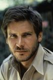 Harrison Ford Fotografia por  Globe Photos LLC